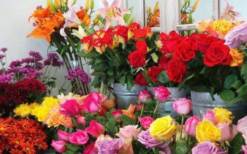 Cách bảo quản hoa tươi thật lâu, bạn có biết?